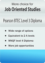 Option_icons_BTEC_small
